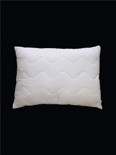 Washable Pillow