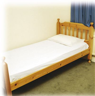 Economy Waterproof Pillow Protector