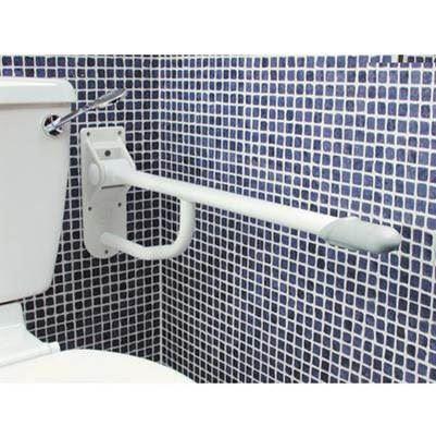 Drop Down Toilet Rail